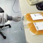 5 requisitos esenciales para donar plaquetas en el IMMSS